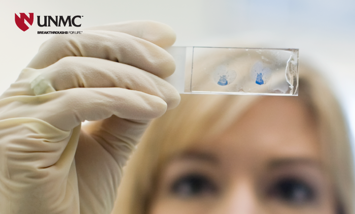Stock UNMC image of medical professional looking at blood slide