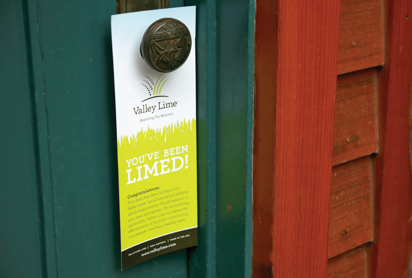 Valley Lime Branding