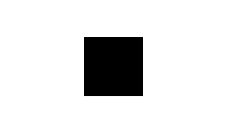 Die Works Logo