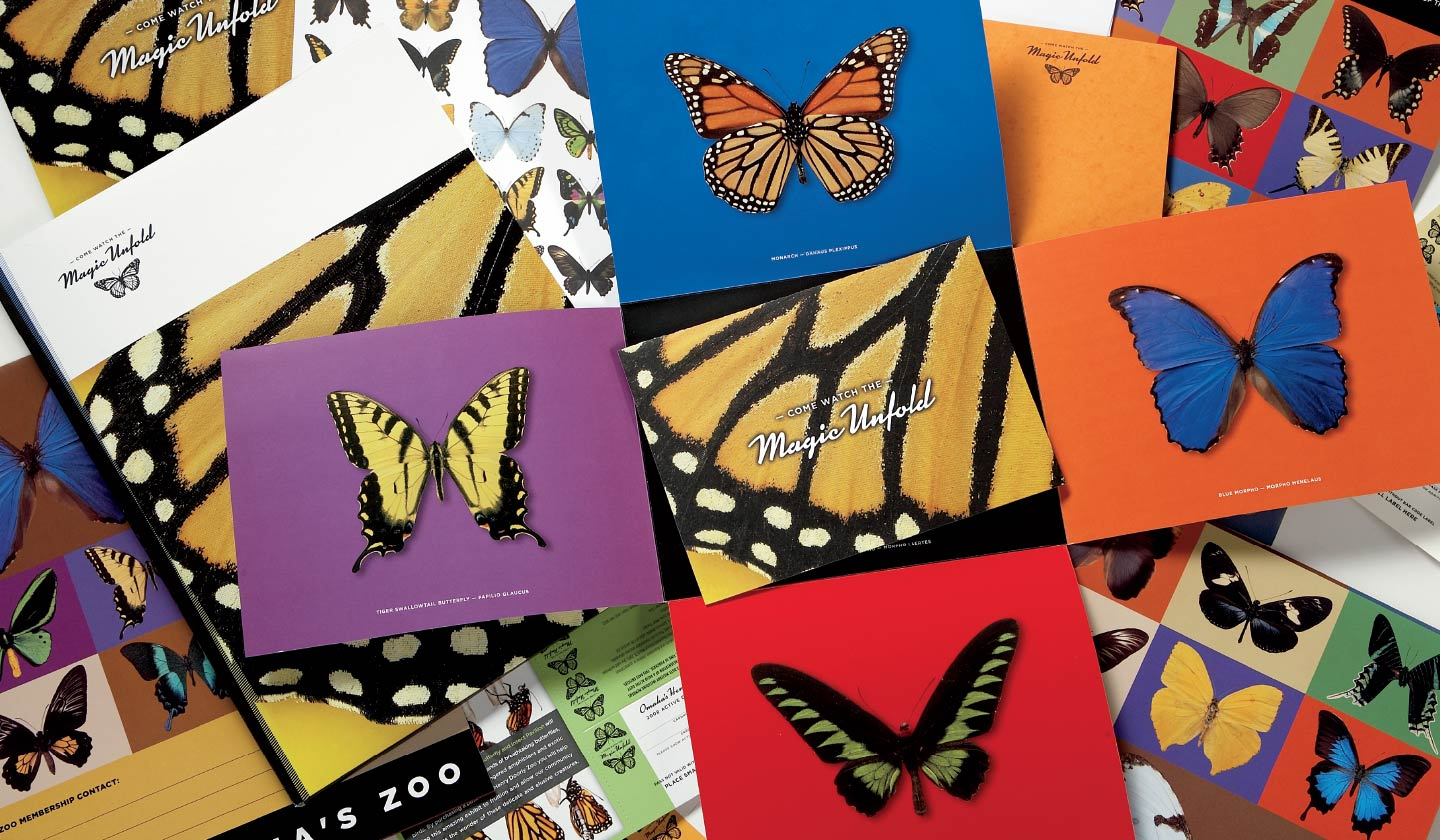 Omaha's Henry Doorly Zoo Butterfly Pavilion collage