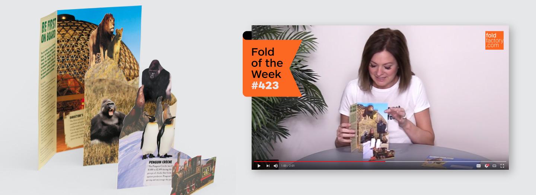 foldfactory fold-of-the-week
